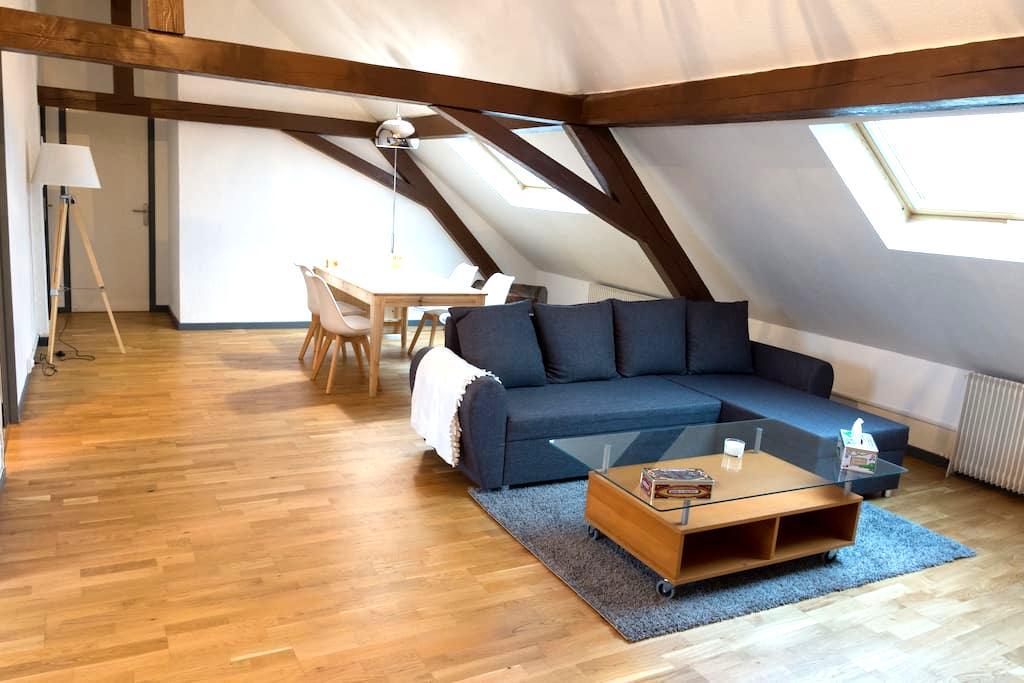 Grand appartement de charme, proche centre-ville. - Belfort - 公寓