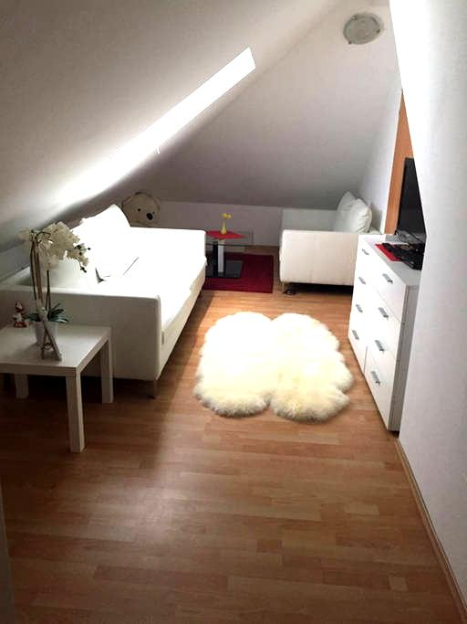 Beautiful rooms close to Vienna-Big house+Services - Traiskirchen - Ház