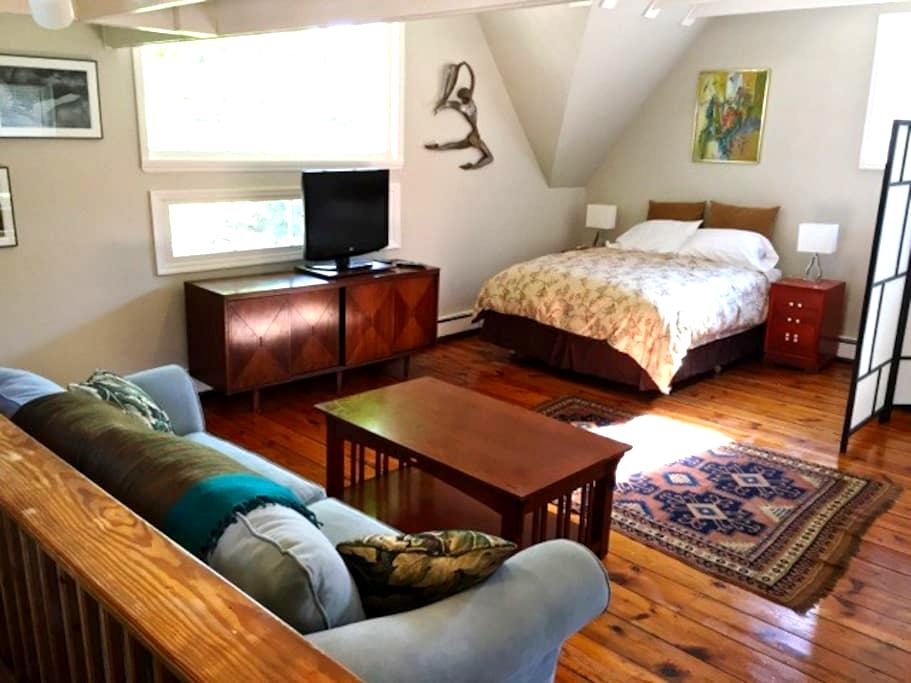 Town Center Spacious Studio Apt. - Woodstock - Appartement