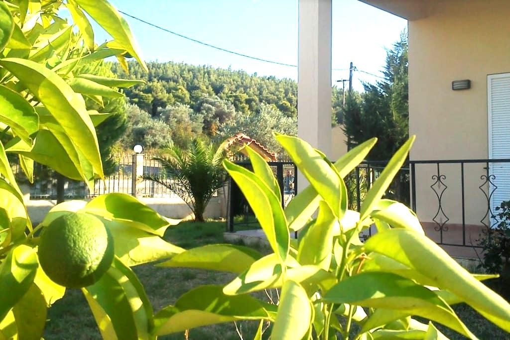 Rent your own house in Pefki/Euboea. - Euboea