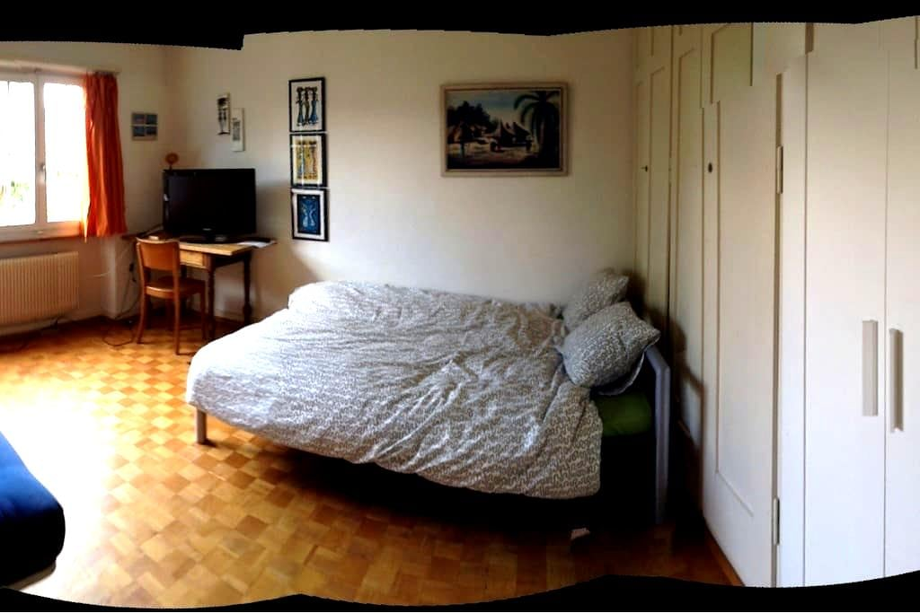 Room in big cosy apartment for 1-3p - Berne