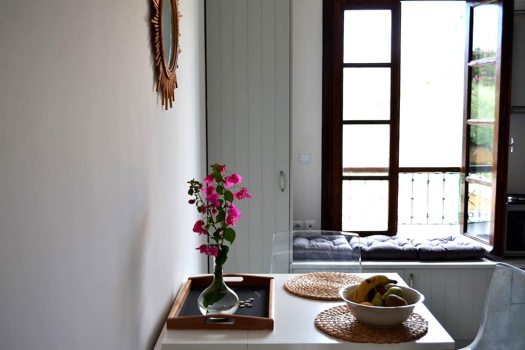 Spetses town studio - Spetses - Lägenhet