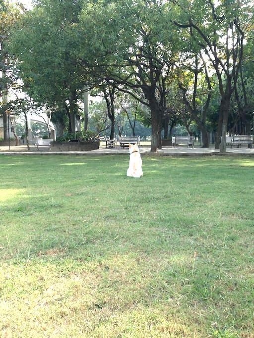 Soulangh Cultural Park Tainan host - 佳里 - Apartamento