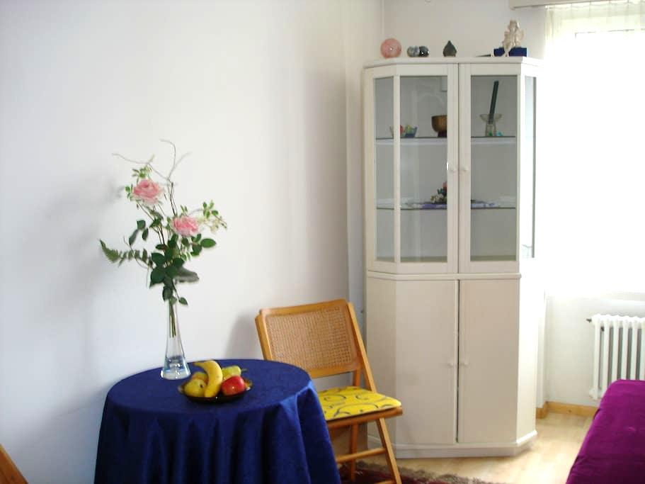 Privatzimmer in Wohnung - Birsfelden - Byt