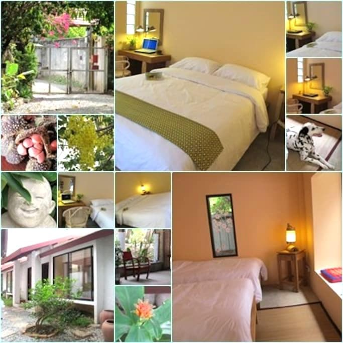 A/C Free WiFi & Private bathroom_A1 - Chiang Mai - Bed & Breakfast