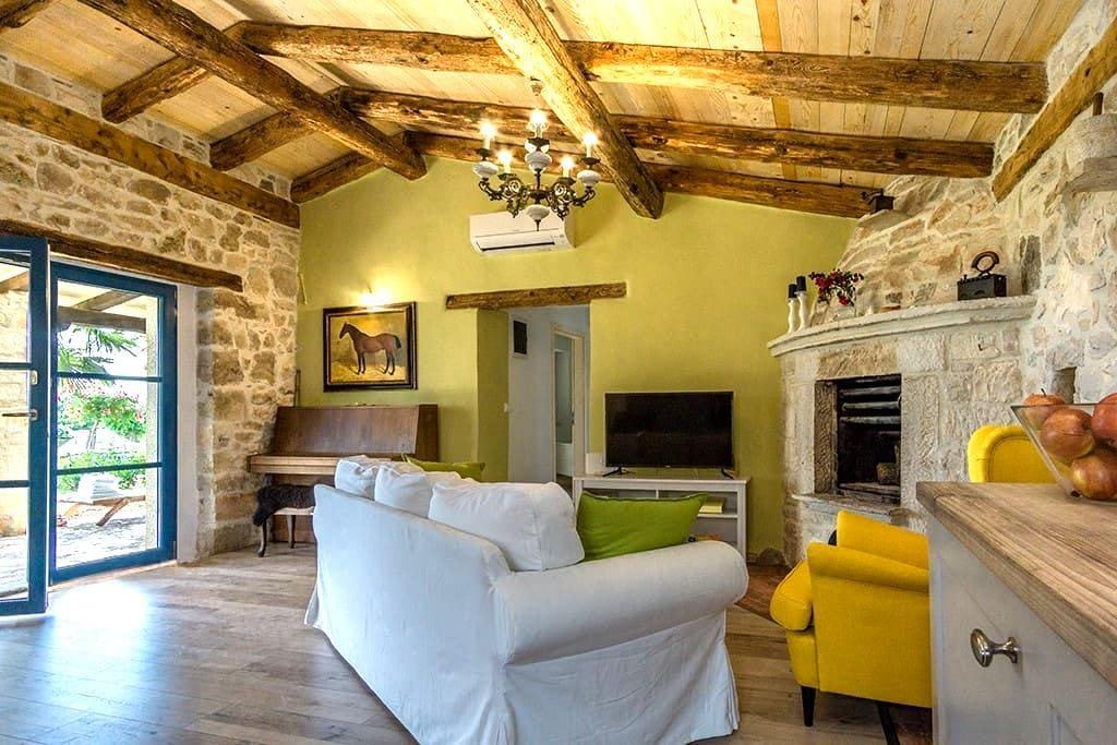 Old traditionalist Istria house - Umag - Vila