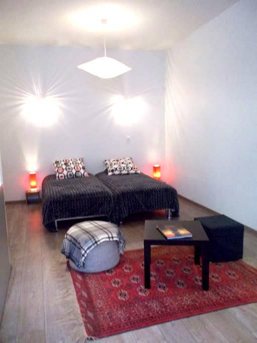 very naice studio in Barcelonnette - Barcelonnette - Apartament