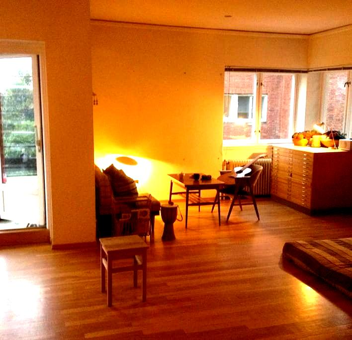 Big spacious apartment with nice people - Oslo - Lägenhet