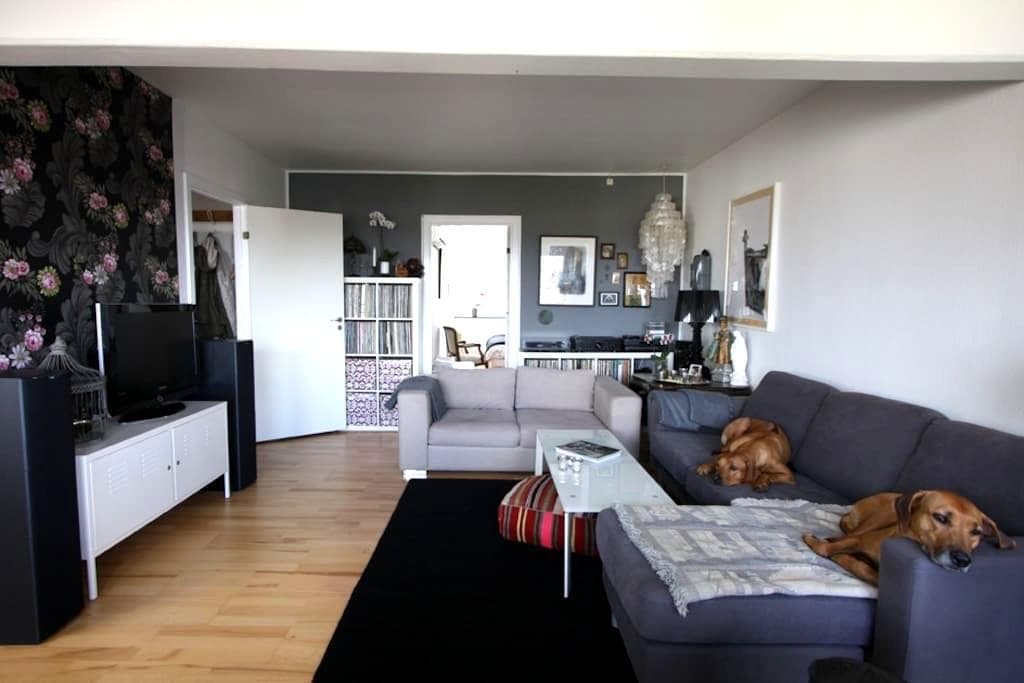 Location, location, location - København - Apartment