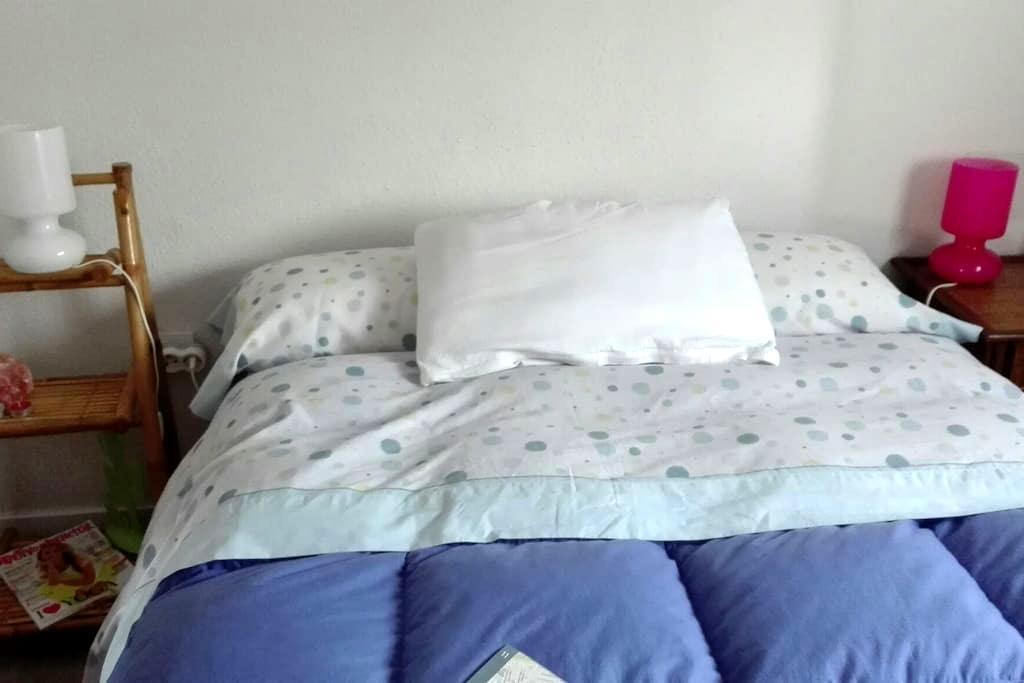 Económica,bonita,amplia,luz,TV-WIFI - Madrid - Bed & Breakfast