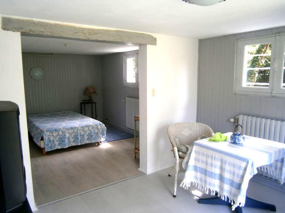 Grande chambre avec salle de douche, wc privatifs. - Écommoy - Dům