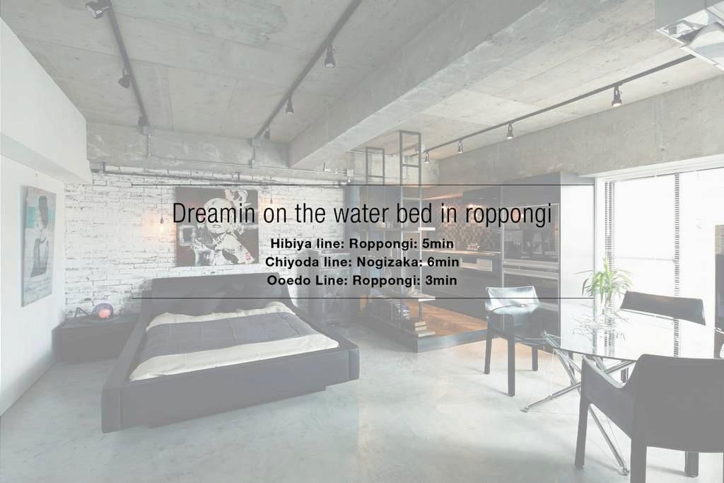 Dreamin on the Water bed In Roppongi - Minato-ku - Appartement