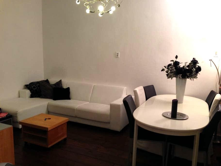 Appartement - Benedenwoning met tuin in Groningen - Groningen - Lejlighed