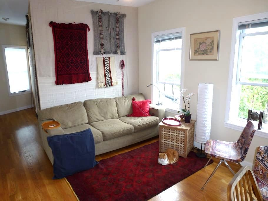 Sunny Centrally Located Single - Somerville - Apartmen