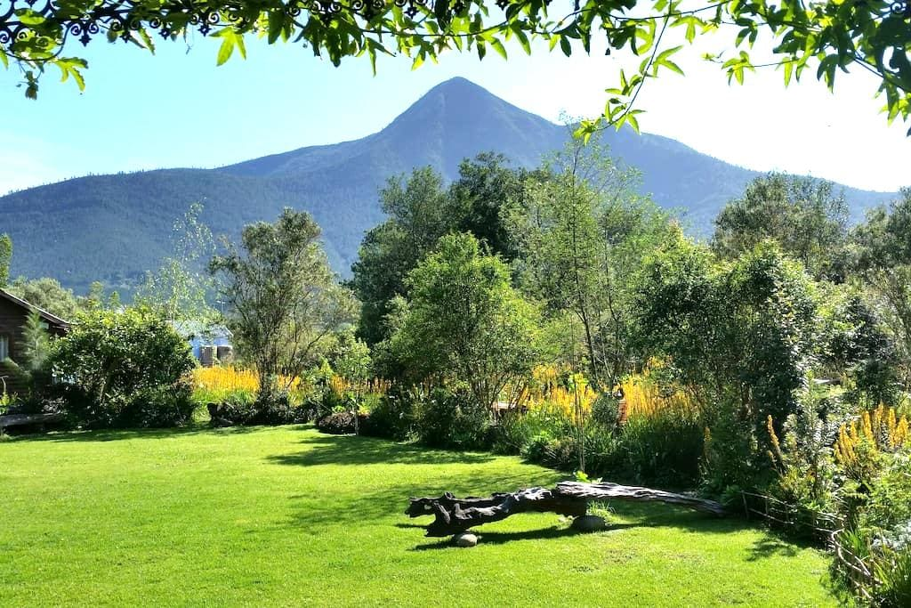 R&C's Garden Pear Tree Cottage - Stormsrivier