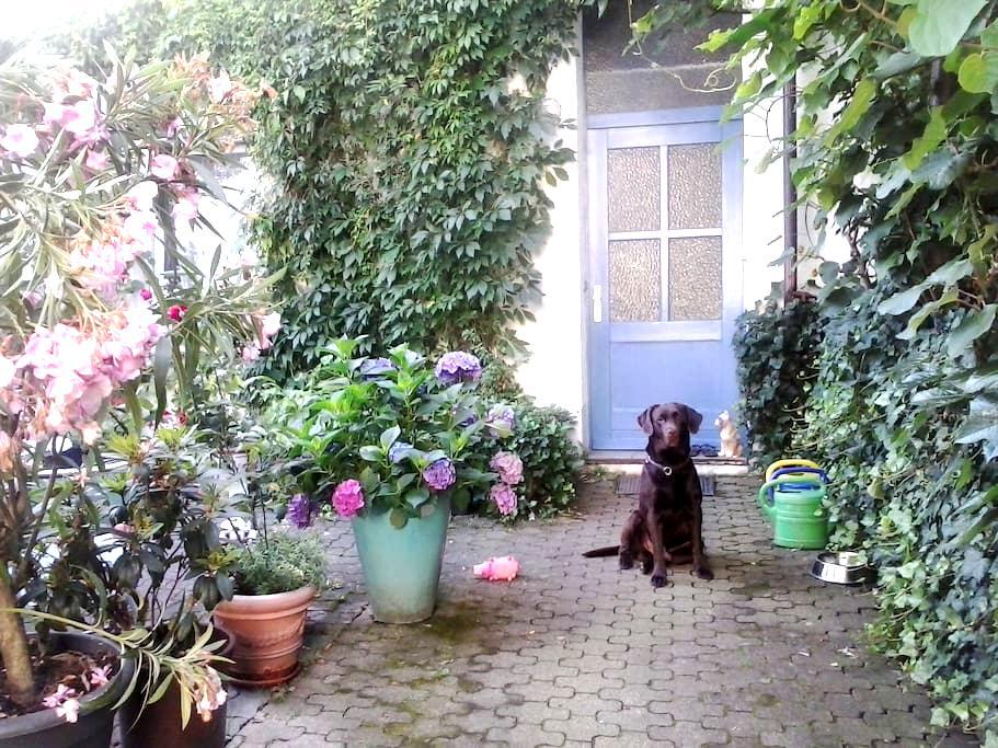 kleines Gästezimmer zentrumnah - Freiburg im Breisgau - Haus