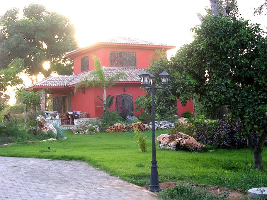 Charming house with huge garden - Pardes Hanna-Karkur - Villa