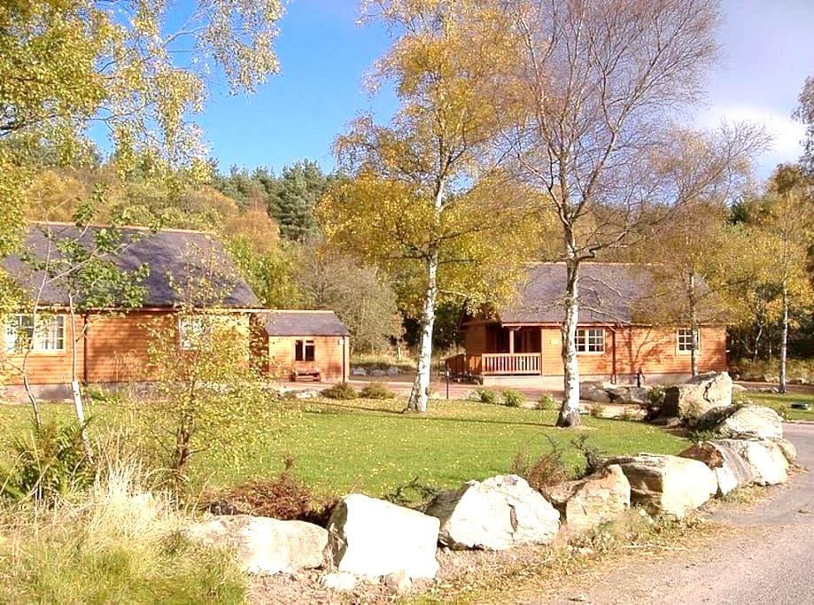 Birch and Willow Lodges - Inchmarlo - 통나무집