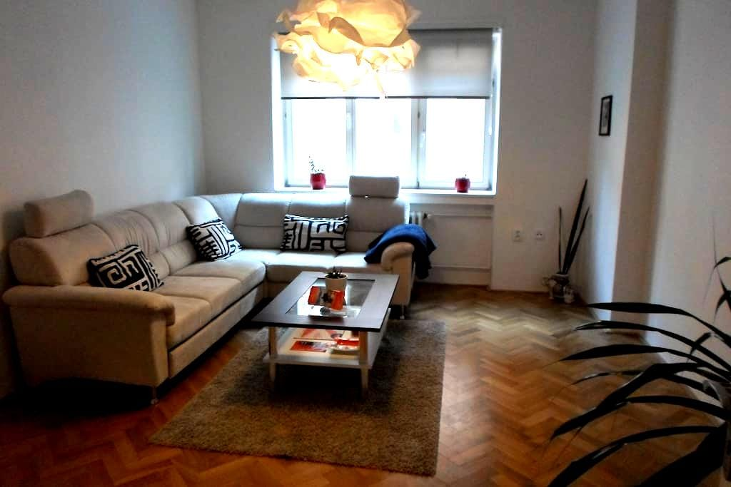 Comfortable apartment in the heart of the city - Brno - Lägenhet