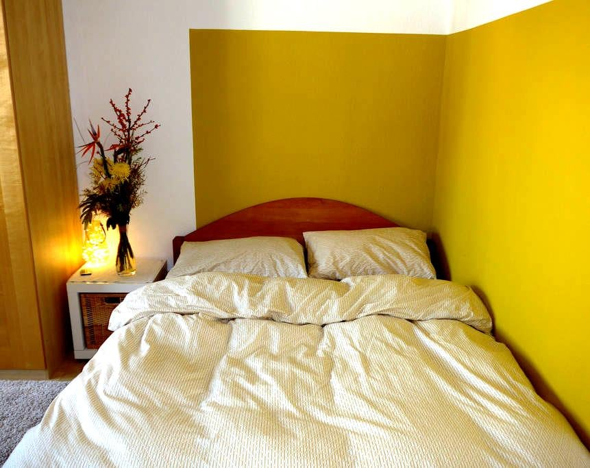 Private room & balcony in a central location - Darmstadt