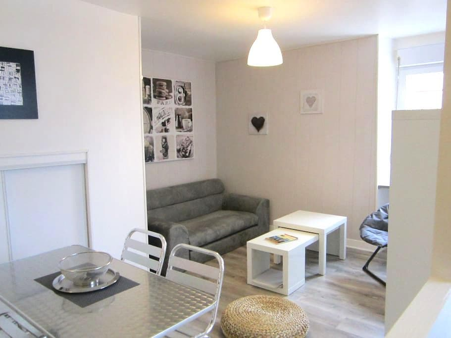 LAZARE HOME BREAK CITY ANGERS - Angers - Apartment