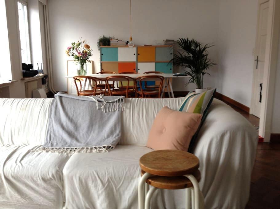 Ruime kamer met privé badkamer vlakbij centrum - Gent - Flat