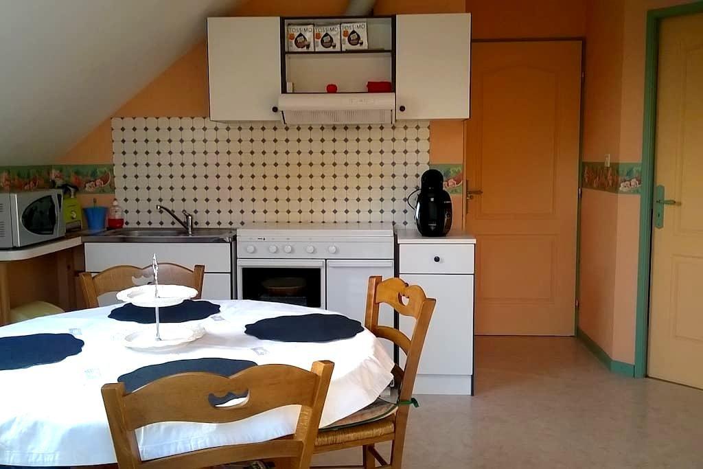 Appartement de 50m2 très lumineux - Locon - Appartement