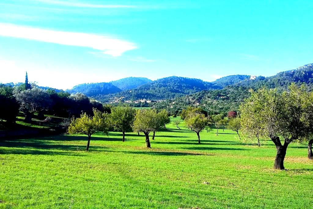 Serra de Tramuntana, lugar idílico - Mancor de la Vall - Квартира
