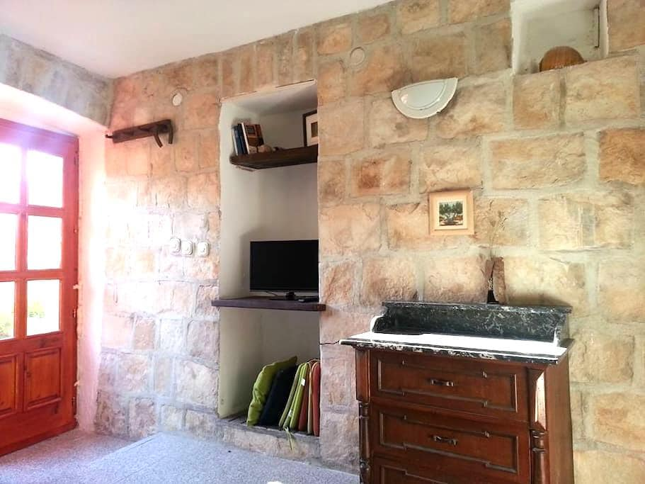 """A1 CHARMING APARTMENT""with TERRACE - Vis - Apartment"