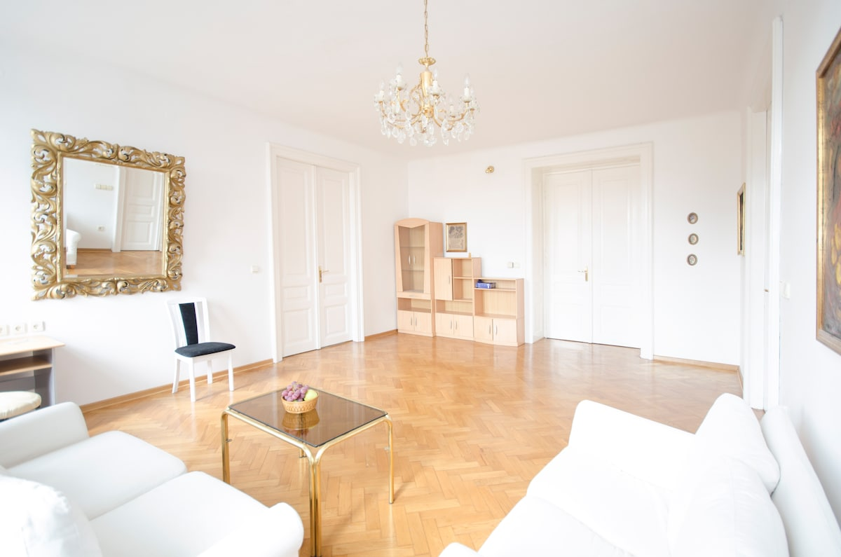 Spacious Flat In Historic Center