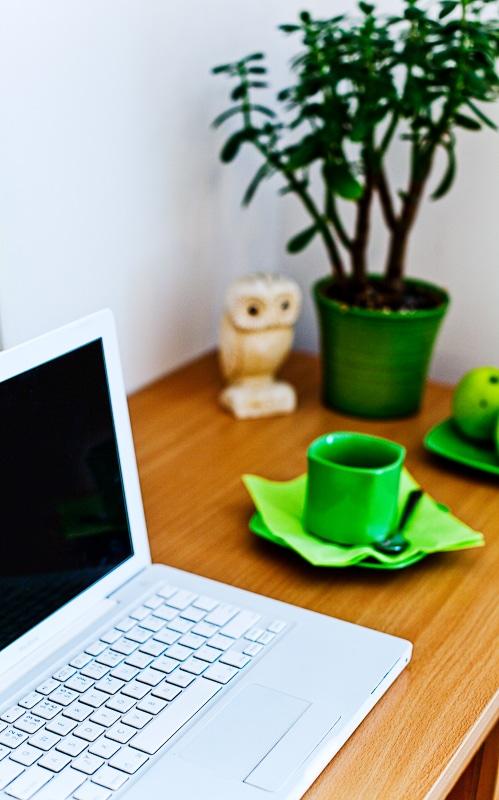 MacBook and Internet