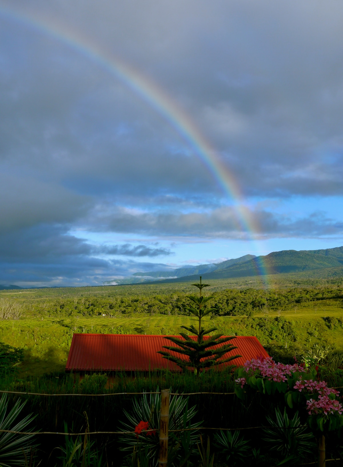 Somewhere over the rainbow cabins are cool.