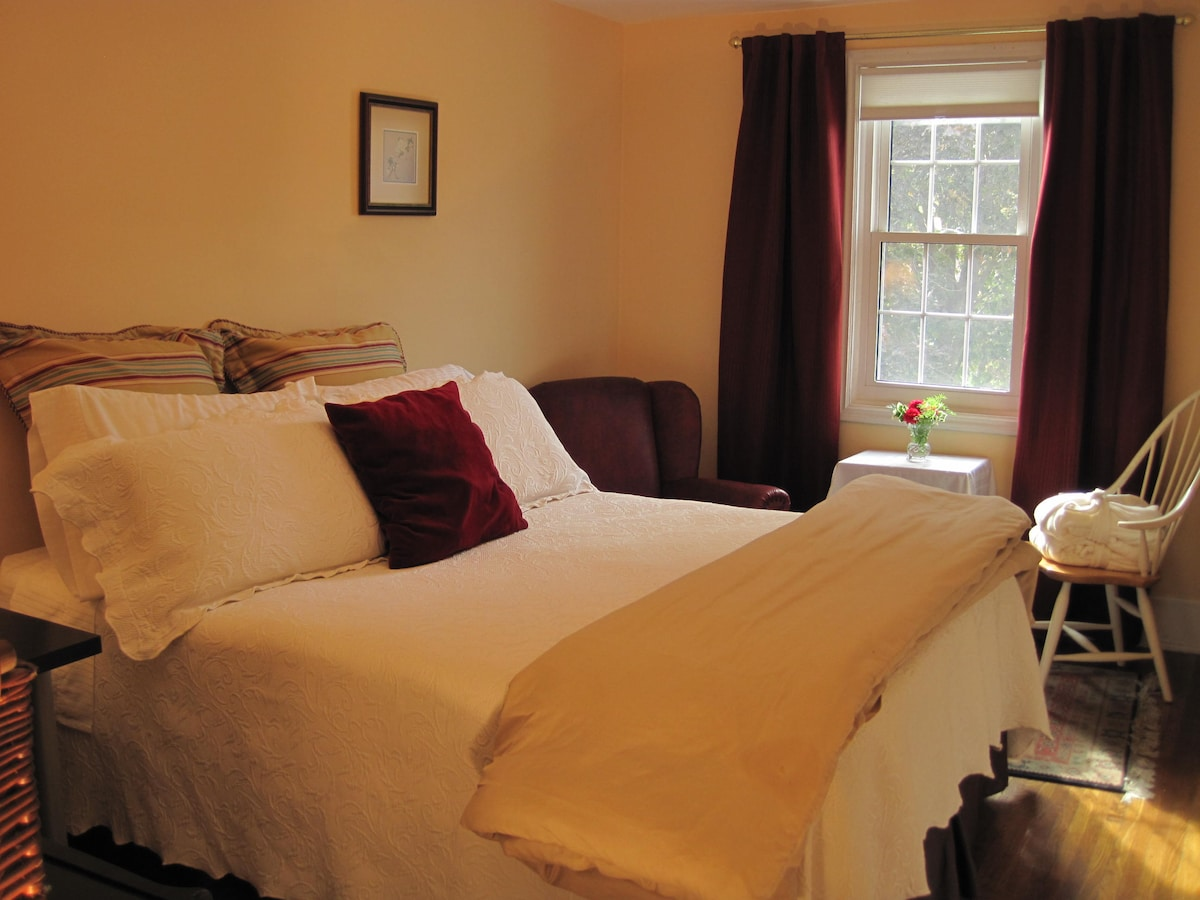 Beautiful large room with queen-size bed with luxury bedding!