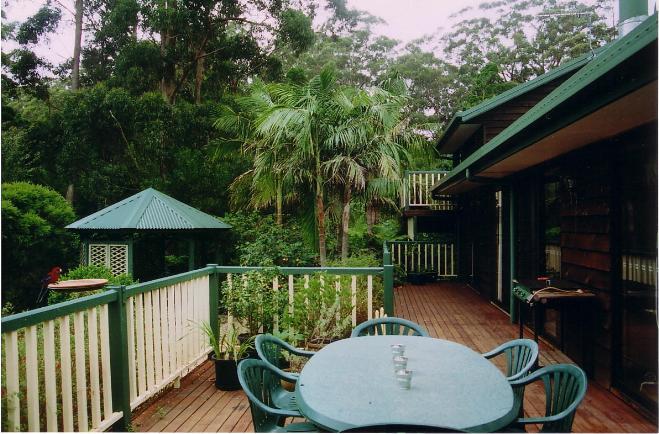 private back yard rainforest garden