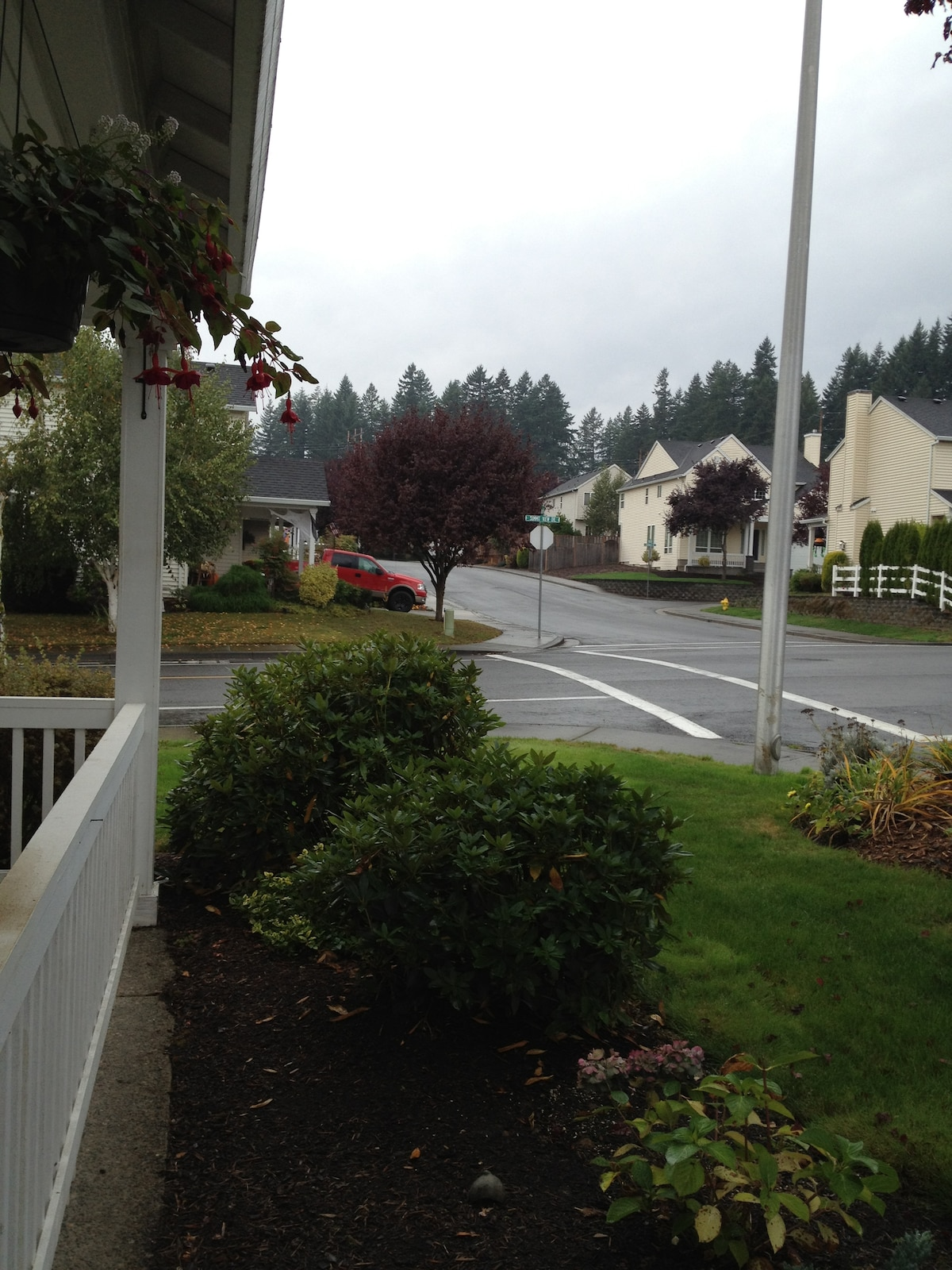 Looking into the neighborhood from front door