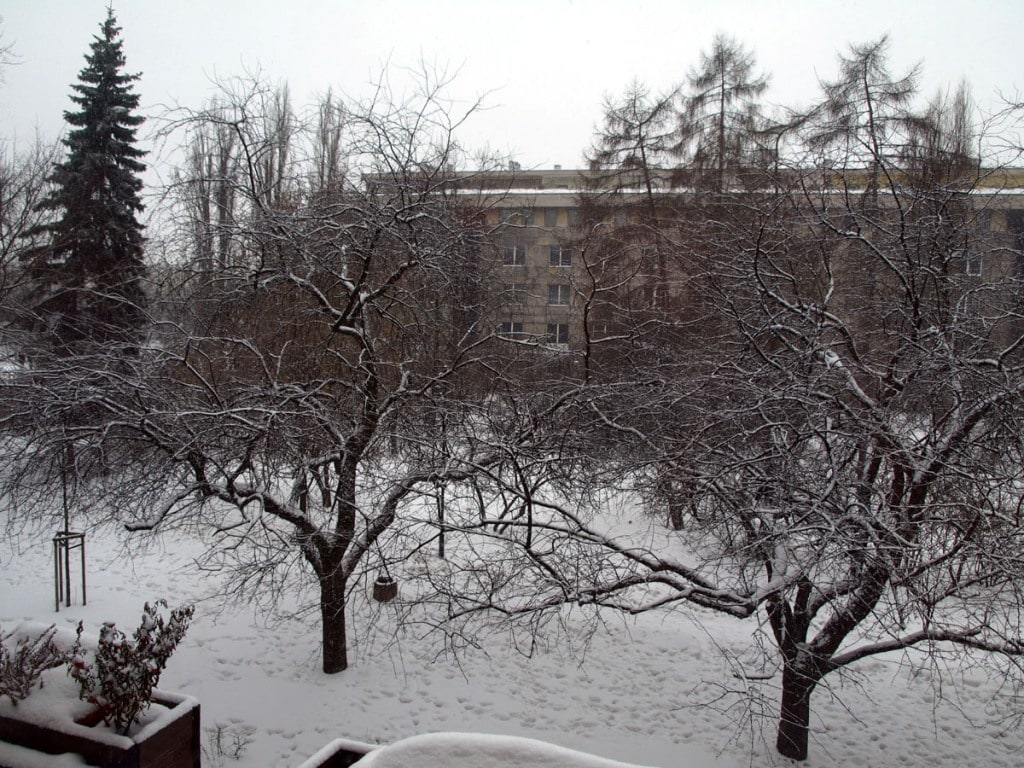 view from the appartment in the winter time