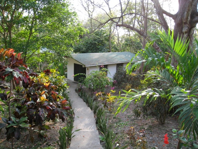 Nosara Retreat: Private Casita