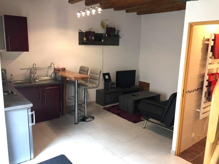 studio indépendant chez l'habitant - Selles-sur-Cher - Appartement