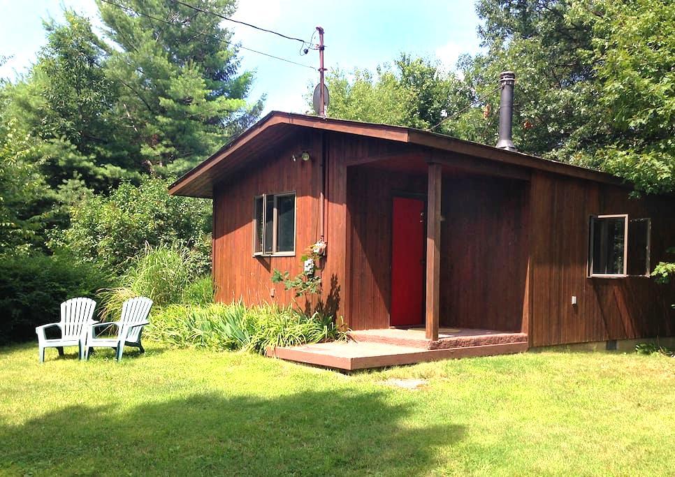 Cozy art studio/cottage in Milan - Stanfordville - Blockhütte