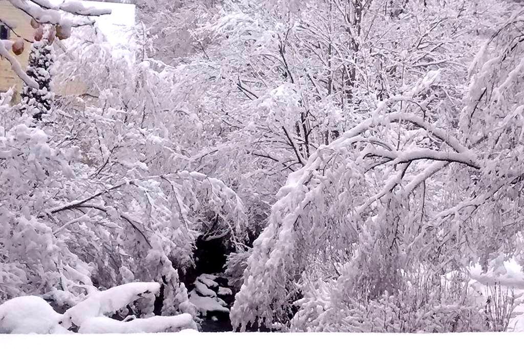 Brookside Apartment Winter Ski Getaway - Pine Hill