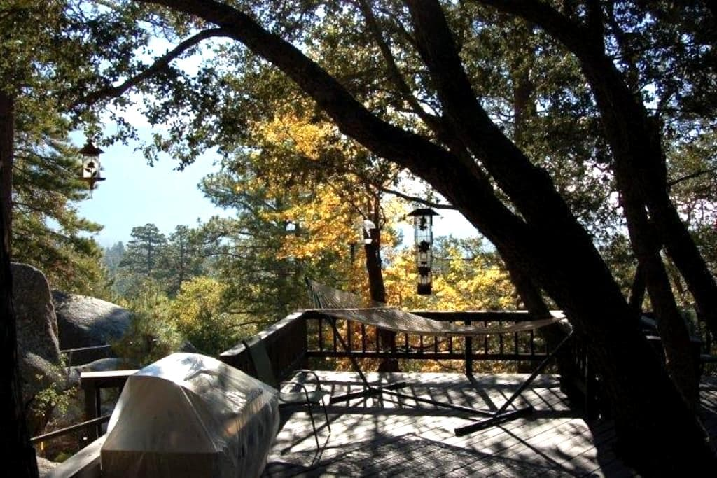 Falcon Rest Lodge, upscale privacy - Idyllwild-Pine Cove - Haus