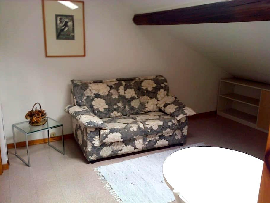 Mansardina bilocale in centro città - Pordenone - Διαμέρισμα