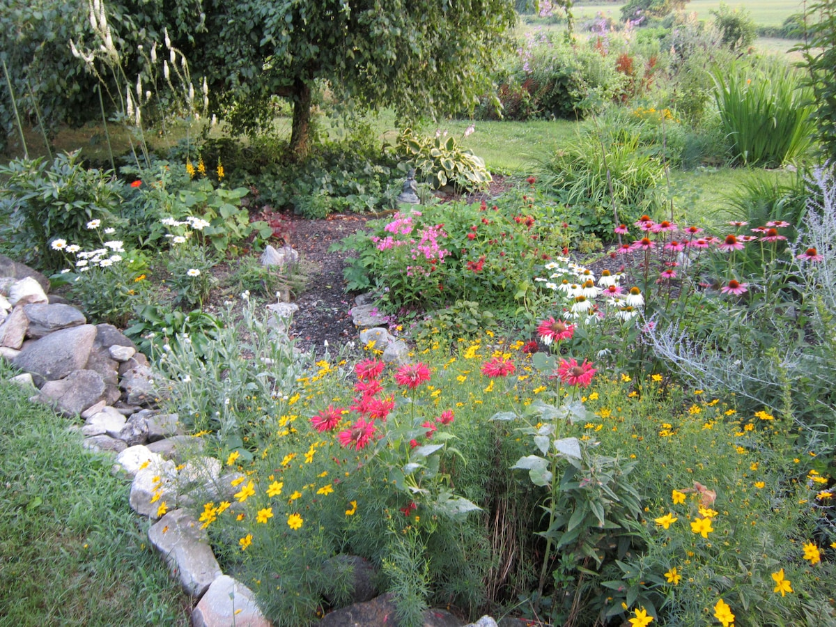 Pretty spring garden
