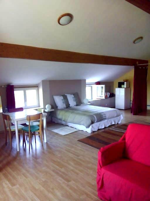 Large private bedroom (53m2) for 4 to 5 people - Le Creusot
