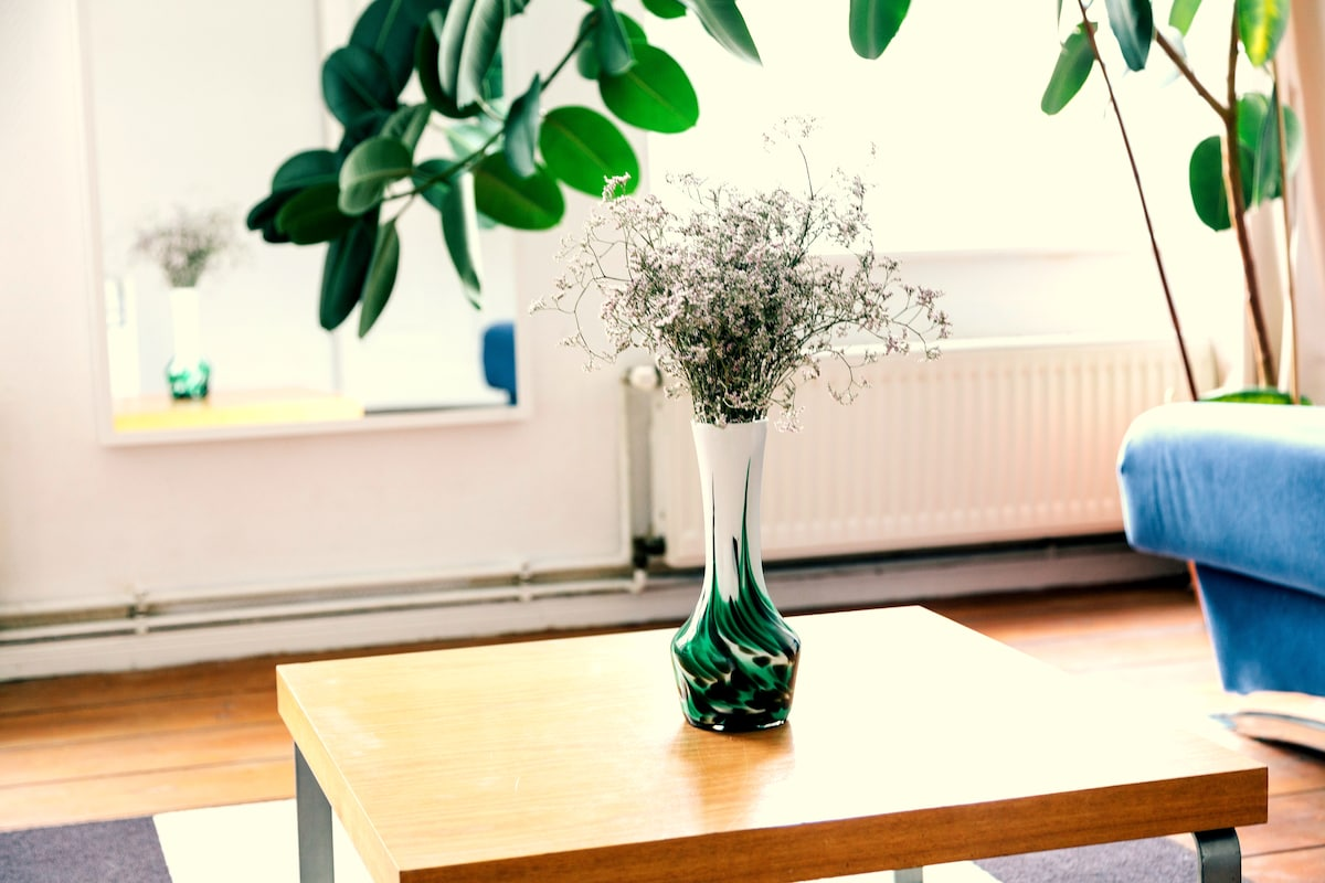 Now in december, we have new furniture! and an amazing plant!