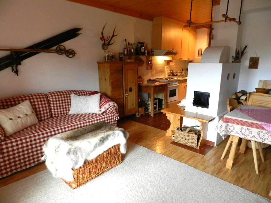 Lovely lodge directly on ski-run 2 - Hochkrimml