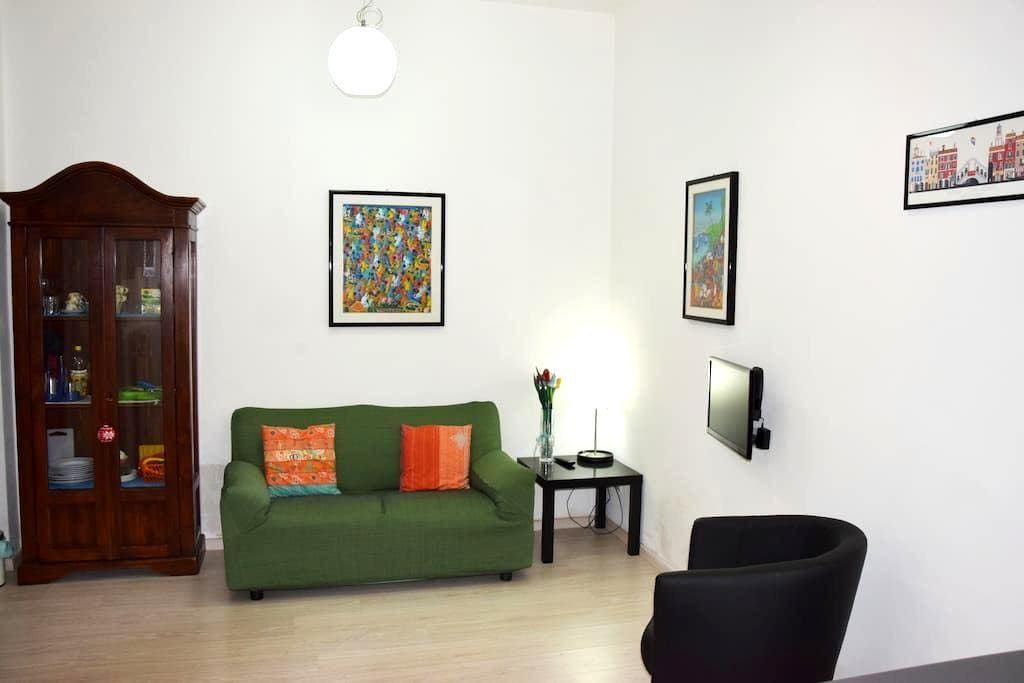 Betty's apartment near Thermal Spas - Acqui Terme - Appartement