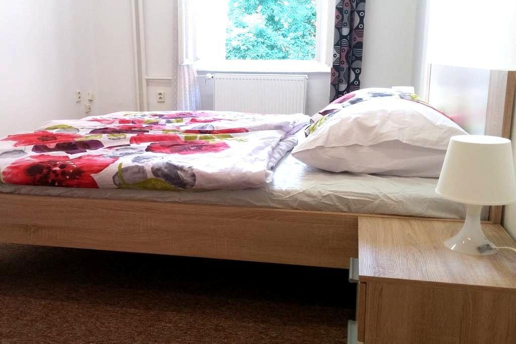 Clean, quiet room in the center - Praha - Huoneisto