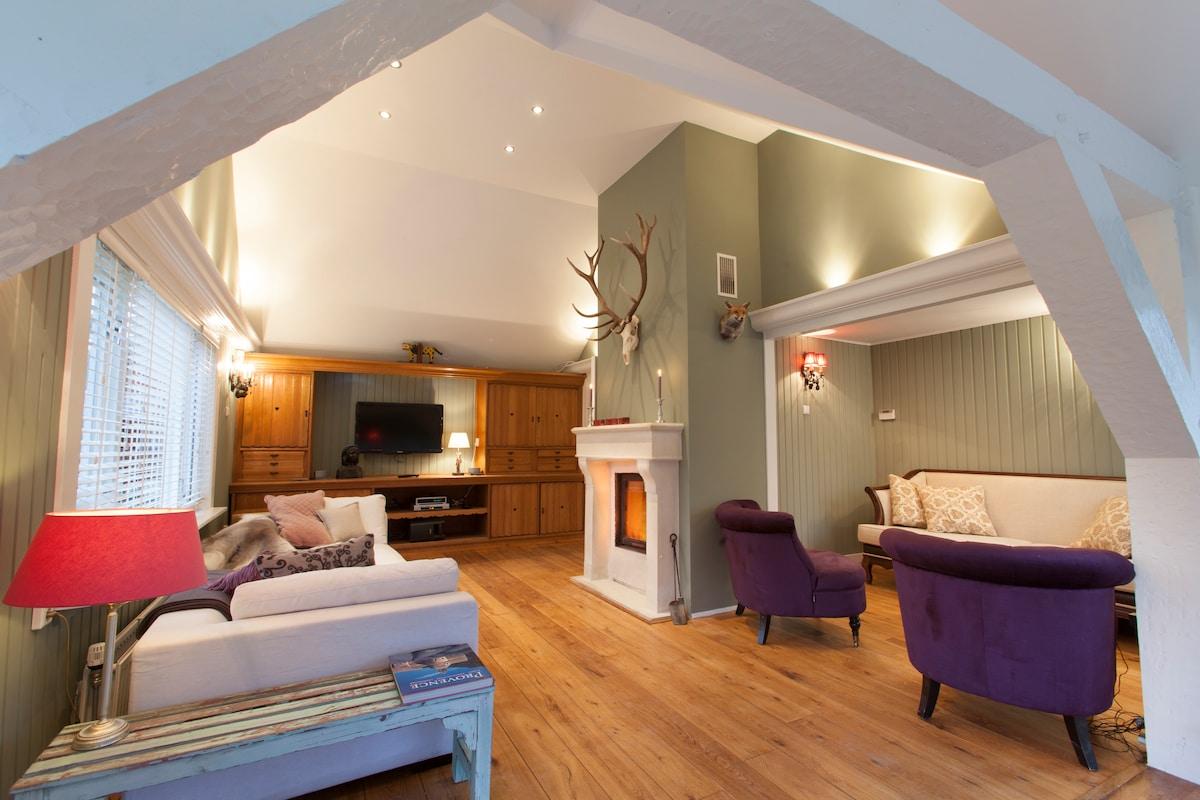 woonkamer met openhaard/living area with fireplace