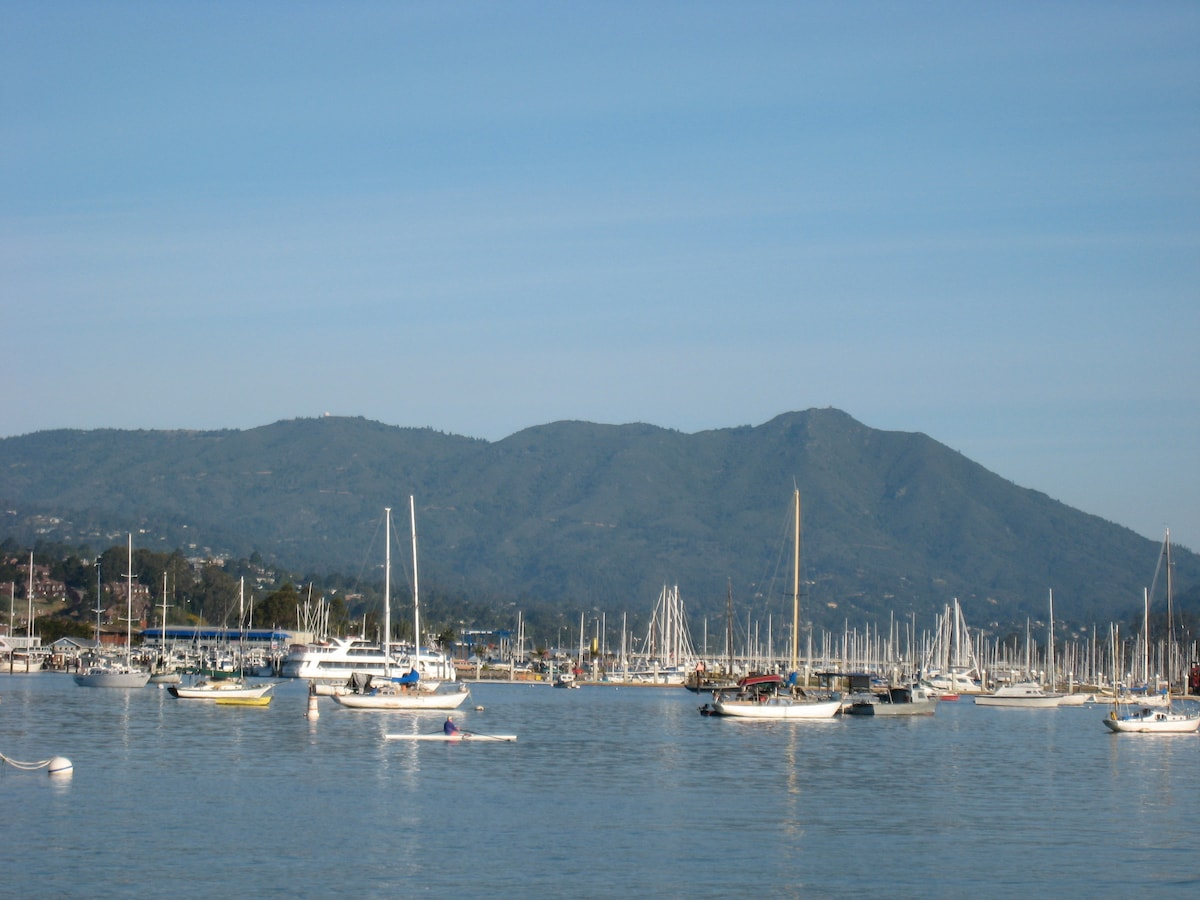 Sausalito waterfront and Mt. Tamalpais